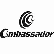 General Account Head at Ambassador Garment & Trade Plc