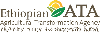 Senior Technical Expert - Engineer at Ethiopian Agricultural