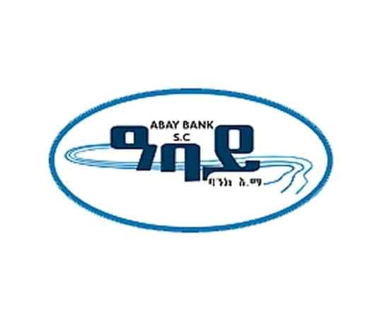 JUNIOR MIS OFFICER at Abay Bank Job Vacancy