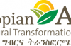 Auditor - Internal Audit at Ethiopian Agricultural Transformation
