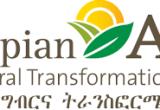 Auditor - Internal Audit at Ethiopian Agricultural Transformation
