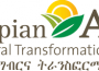 Auditor – Internal Audit at Ethiopian Agricultural Transformation