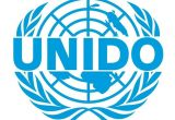 DRIVERS (4) at UNITED NATIONS INDUSTRIAL DEVELOPMENT ORGANIZATIO