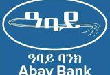 CASHIER at Abay Bank S.C