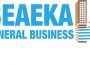 Sales man at BEAEKA General Business PLC